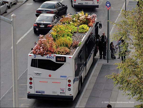 Gärten auf Busdächern