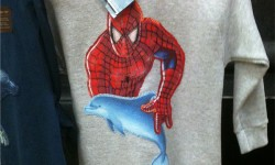 spiderman-liebt-delfine