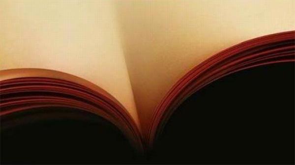 Buch Dekolleté