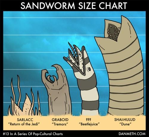 Sandwürmer im Größenvergleich