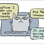 Katze hasst alles und jeden!