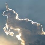 Einhorn Wolke - Gefunden auf http://deingesichtnicht.de/blog