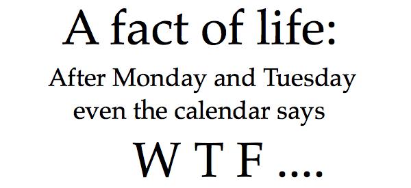 Even the calendar says WTF...