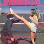 Taekwon-Do Tennis