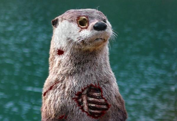 Zombie Otter