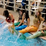 Meerjungfrauschwanzflossen