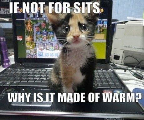 If Not For Sits - Why Is It Made Of Warm?