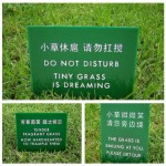 Rasen betreten verboten - in nett...