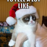 Christmas Grumpy Cat