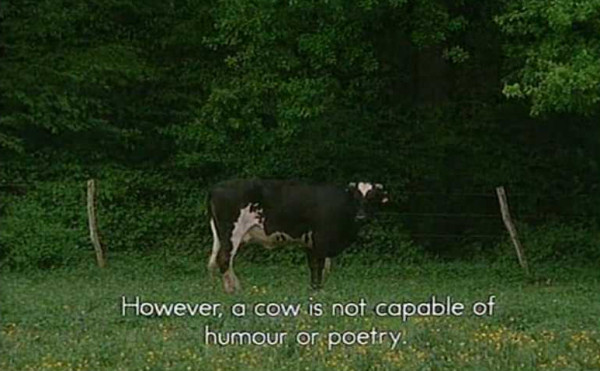 However, a cow is not capable of humour or poetry.