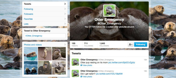 Otter Emergency