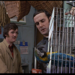 Szene aus dem Dead Parrot Sketch