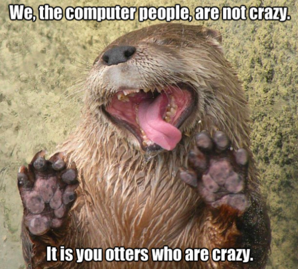 We the computer people are not crazy. It is you otters who are crazy.