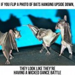 Bat Dance Battle