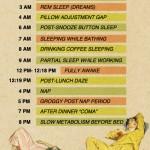 Die Stufen des Schlafes