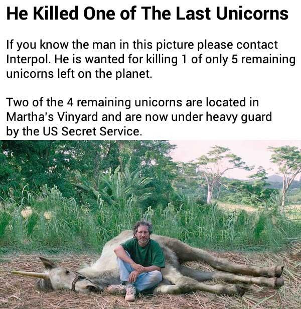 Last Unicorn Killer