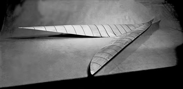 V-Shaped Wing