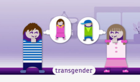 Transgender bei tivi