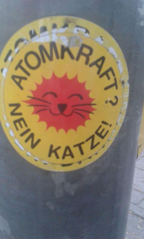 Atomkraft? Nein Katze!