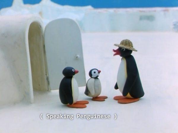Speaking penguinese
