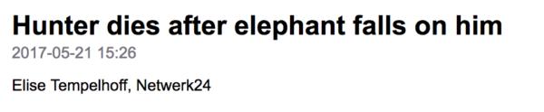 Hunter dies after elephant falls on him