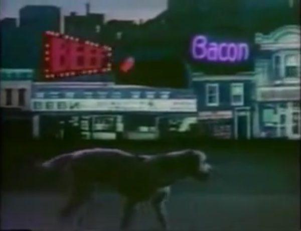 Tom Waits macht Werbung für Hundefutter