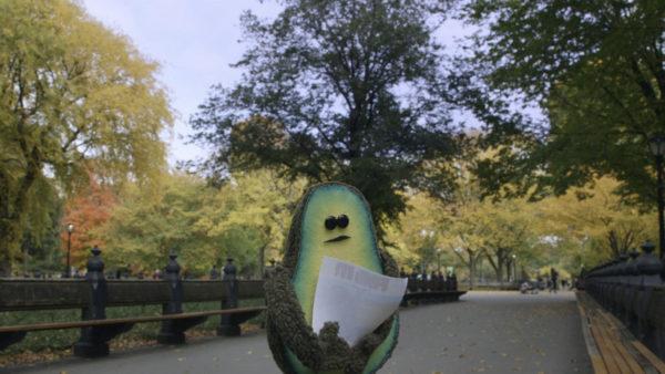 The Pits - Avocado